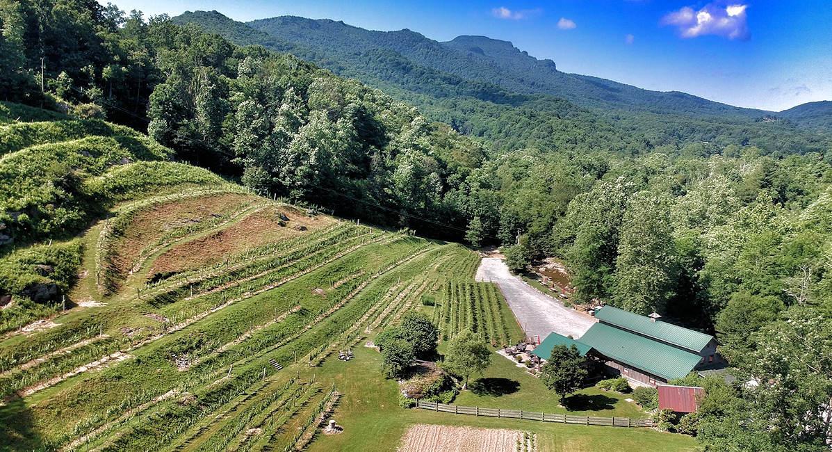 Wineries near Sugar Mountain