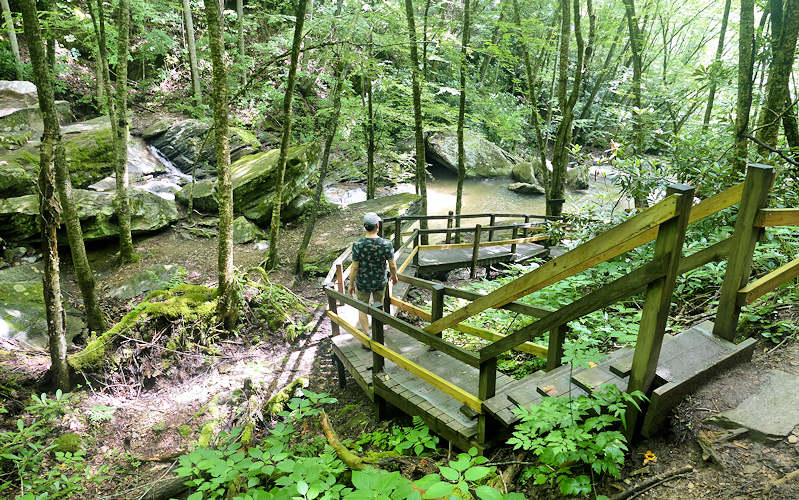 Trail to Crab Orchard Falls