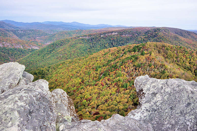 Hawksbill Mountain NC Summit