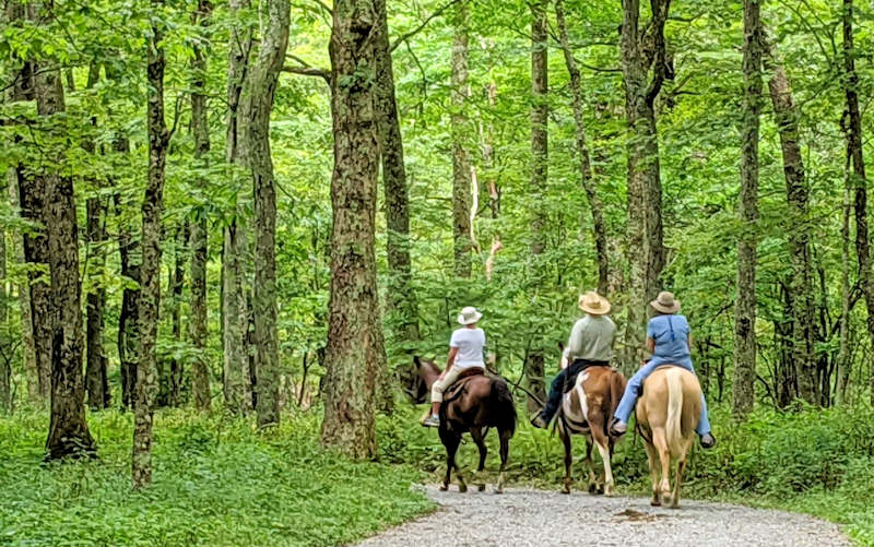 Horseback Riding Blue Ridge Parkway