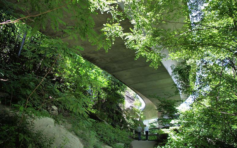 Tanawha Trail, Linn Cove Viaduct
