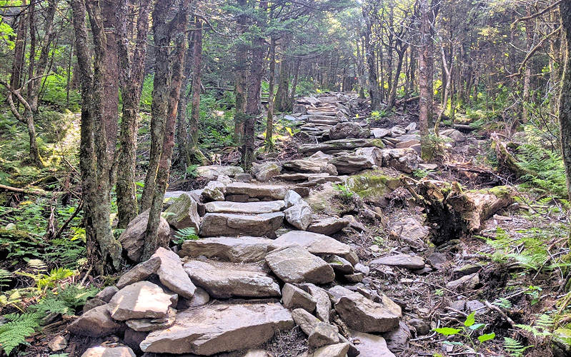 Profile Trail Stairs