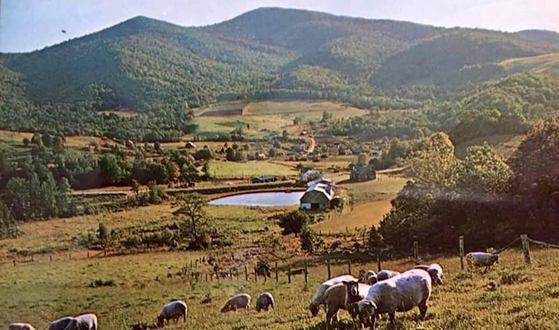 Sugar Mountain 1977